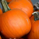 pumpkin016